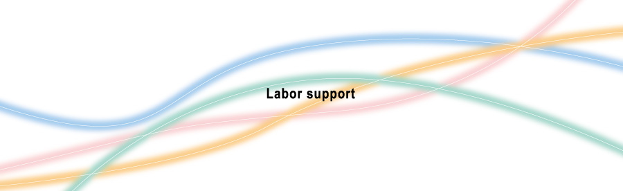 Labor support